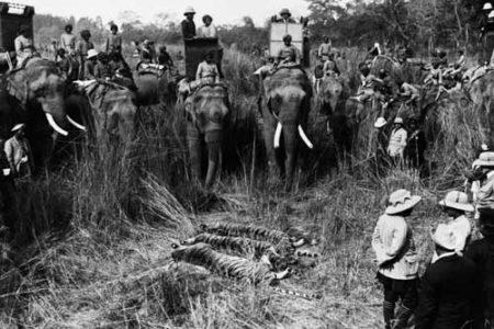 La división colonial de África